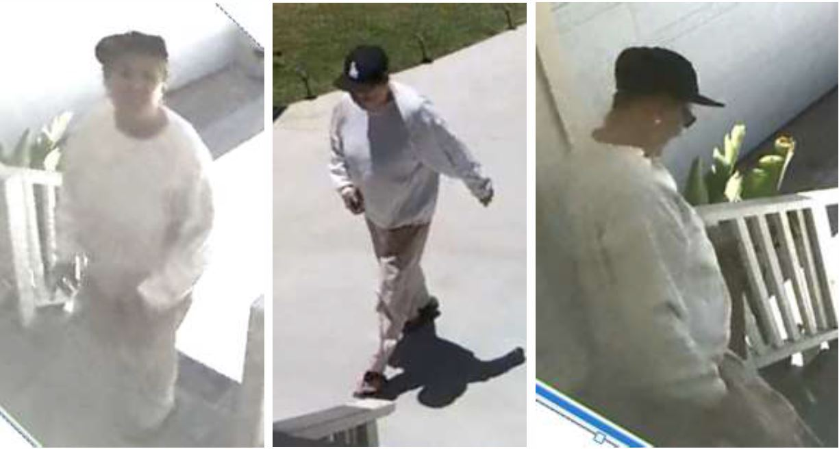 alleged package theft